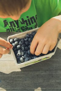 child choosing blueberries